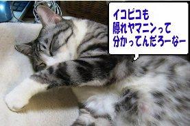 眠いときは寝ろ!