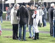 騎手はレース前に関係者と相談